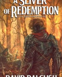 A Sliver of Redemption Review