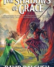 The Shadows of Grace Review