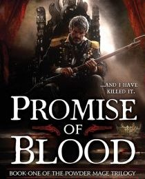 Promise of Blood Review